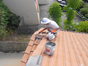 Grant Painters are experts in roof painting